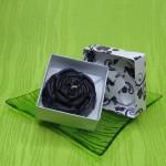 Dárková krabička (svíčka) - růže fialová