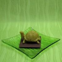 Svíčka - želva