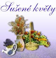 www.susenekvety.cz